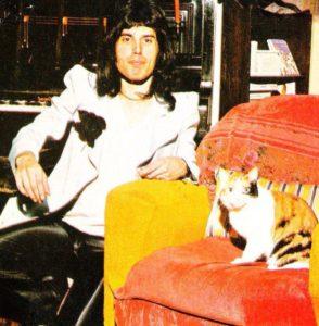 Freddie i kot Jerry