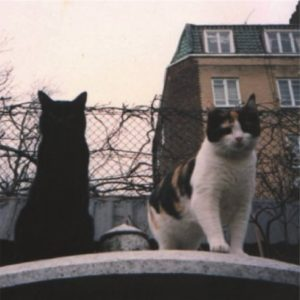 Goliath i Delilah wiosną 1991 r. w Garden Lodge
