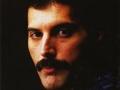 Freddie Mercury: : an intimate memoir by the man who knew him best